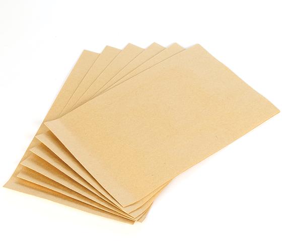 CVG170-101 Paper Filter Bag (6 per pkt)